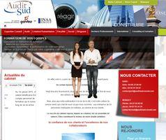incaro-services-informatiques-herault-auditsudconseil
