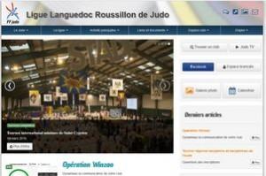 incaro-services-informatiques-herault-ligue-languedoc-roussillon-judo